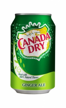 Canada Dry 0,33l